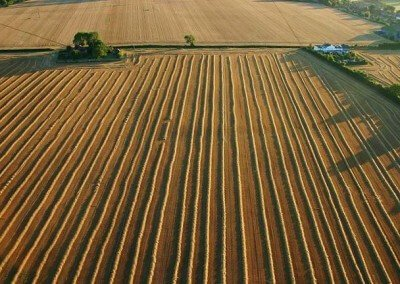 Kent Ballooning |Straight Lines